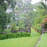Ngare Sero Mountain Lodge grounds