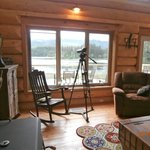 Great room, ready for bird watching! (100265742)