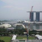 Вид на город и залив со смотровой площадки