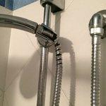 Our shower hose.