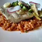 Market fish with farro and fresh vegetables