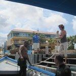 Den Leman from dock