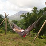 Arenal by hammock