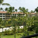 Pool/Tropical View Room