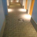 Carpet in hallway