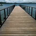 The dock where you arrive/depart. Boat Excursions leave from here