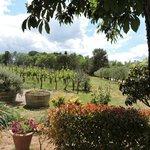 I love Tuscany
