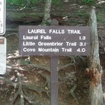 Laurel Falls  |  Little River Road, Great Smoky Mountains National Park, TN 37738