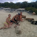 Friends at the pig beach on Big Majors.  The small ones were friendly bit the large pigs snapped