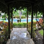 Canopy to the pool and gardens