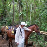 Giving the horses a break in the jungle while we visit the waterfall