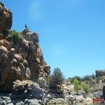 Rock climbing at Watson Lake