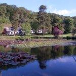 Heaven in Lake form