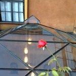 Belvedere: restaurant terasse