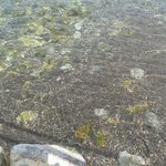 Doga deniz mistik hava huzur hersey burda