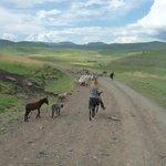 Lesotho, je kan eigenlijk gewoon gaan zitten en genieten van alles wat voorbij komt