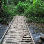 A bridge over river