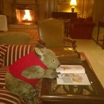 Every hotel needs a wombat to read a bedtime story by an open fire