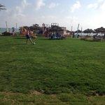 Grass area near beach bar