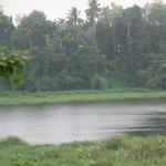 kalady river
