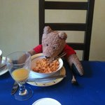 A teddy bear also enjoyed Liz's breakfasts