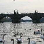 Карлов мост, а за ним еще мосты