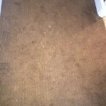 various stain a dirt embedded in the carpet