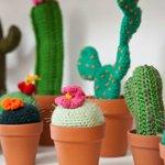 Cactus tejidos a mano en Tienda de Costumbres