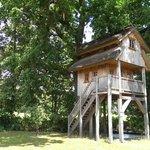 Das Baumhaus am Ufer