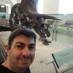 Museu de História Natural - Manhattan NY