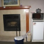 Fireplace, Refrigerator and Microwave
