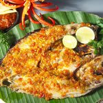 Nice food, fresh fish, great atmosphere. You could find fish you have never seen before on the m