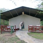 Large luxurious tent