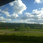 Dorset - Beautiful countryside view from my Room!