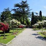 Den vakre hagen