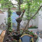 Mosque garden/entrance/tea area