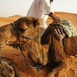Hassan et son dromadaire