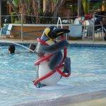 Splash zone/pool
