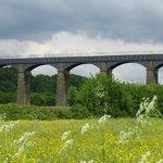 菜の花畑と水道橋