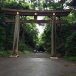 Meiji jingo shrine on a rainy day