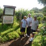 At  the start of the Kaluapapa Trail