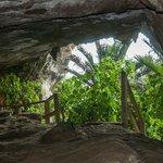 Punakaiki Cavern, within walking distance.