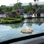Balcony view from the Laguna Villas.