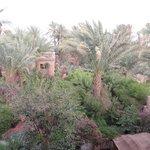 Jardin d'Ali