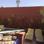 Rooftop sunbathing area needs some TLC, only disappointment because it was nothing alike the pic