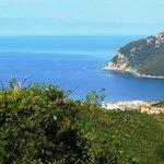 Vista dalla camera 9 (golfo di Riva Trigoso)