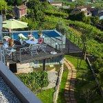 terraza / piscina sobre viñedos