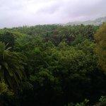 Вид из номера в дождливый день