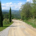"""a """"white road"""" in Tuscany"""