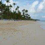 la plage de bonne heure